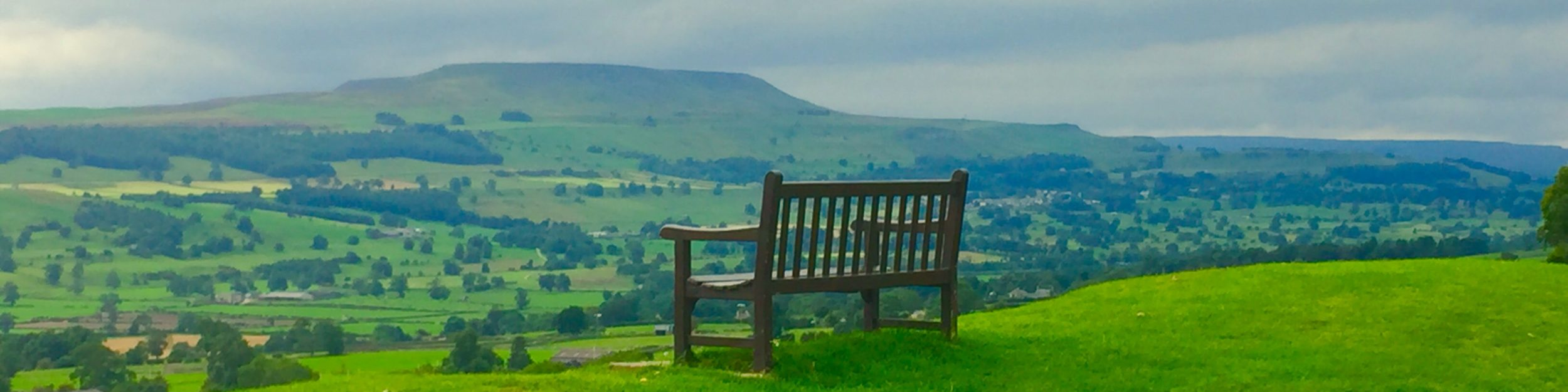 My Favourite Bench